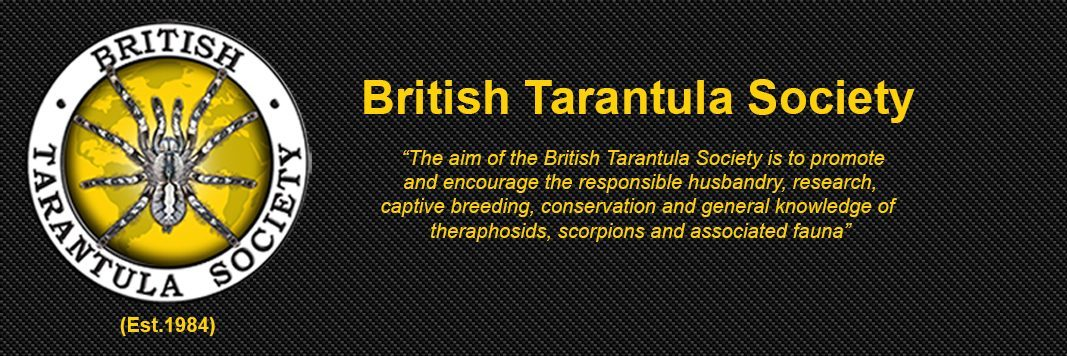 Members of The British Tarantula Society