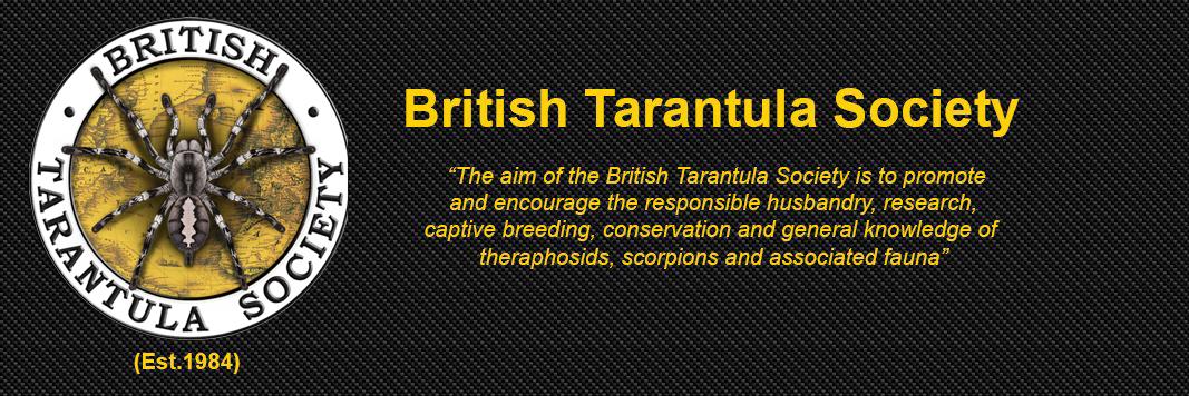 Members of The British Tarantula Society